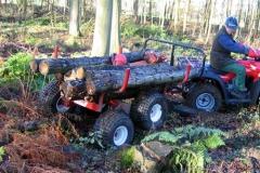 Holztransporter-quad